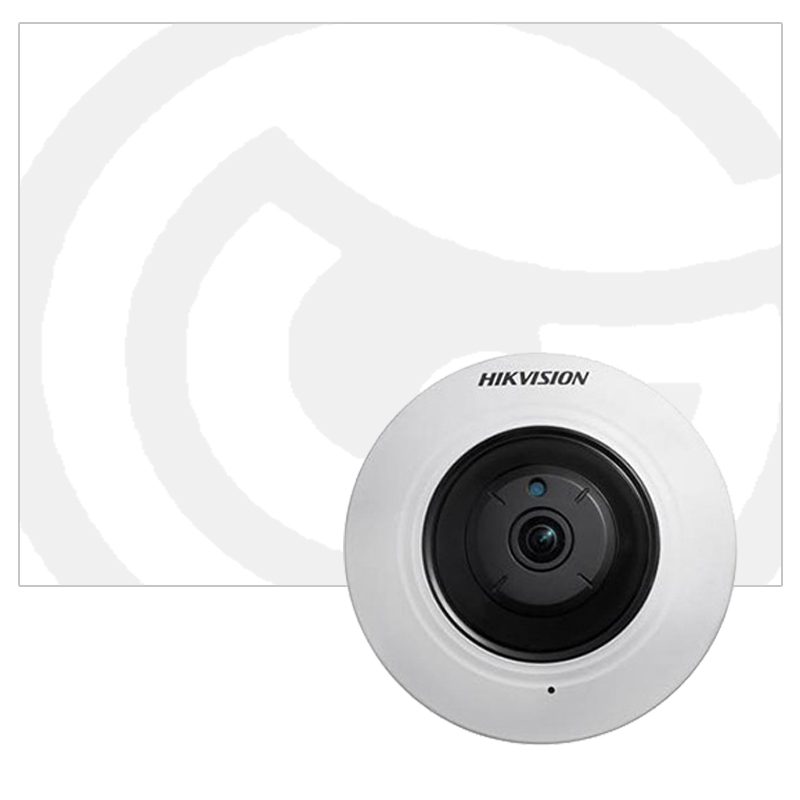 IP Fisheye Cameras